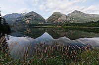 Mountain and sky reflections in the northend of Lake Chelan bordered by tall grasses, Stehekin, North Cascades National Park, Washington State