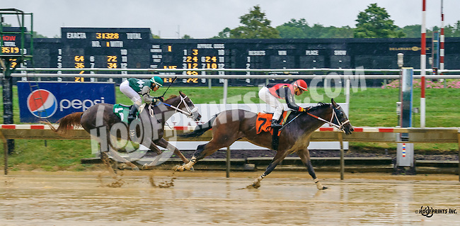 Crisis Averted winning at Delaware Park on 9/19/16