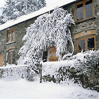 The wintry exterior of the stone cottage with a carpet of snow on the terrace