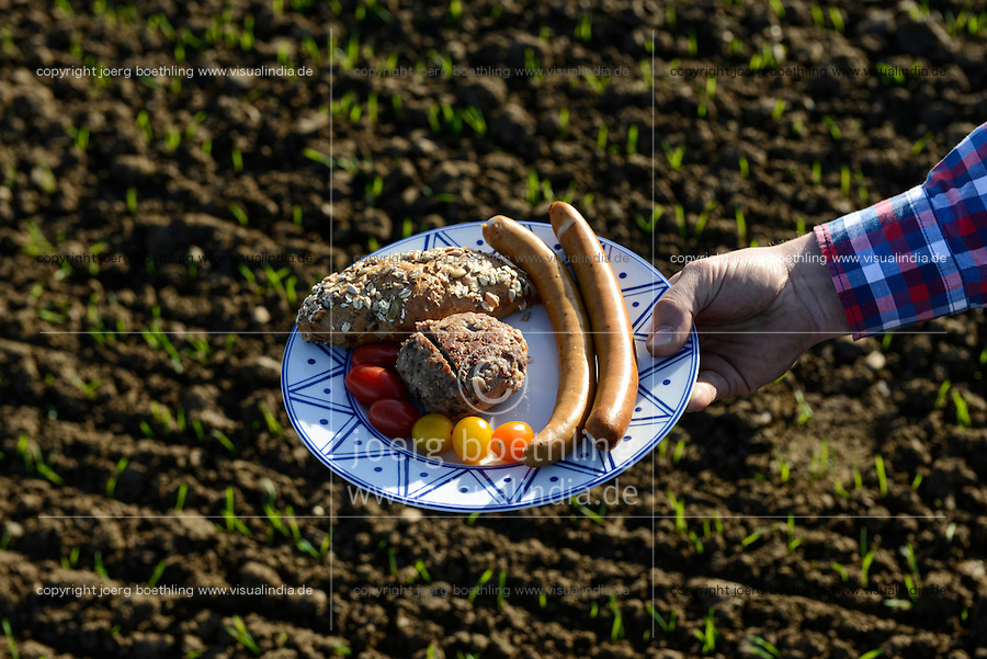 Germany, plate with german food on field / DEUTSCHLAND Teller mit deutschem Essen auf dem Feld