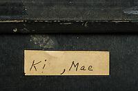 Willard Suitcases / Mae K / ©2013 Jon Crispin