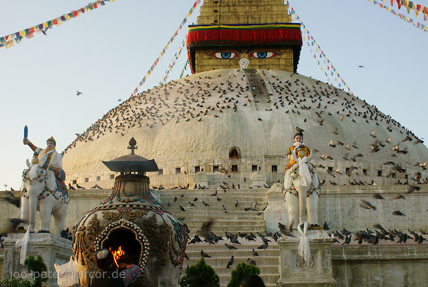 doves on Boudha stupa in Kathmandu, Nepal in soft  early morning light - Boudhanath near Kathmandu is one of the most holy places of buddhist worship and pilgrimage. The ancient Stupa is one of the largest in the world.