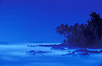 Misty blue water and palms at Keanae, maui.