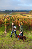 USA, California, Sonoma, Gundlach Bundschu Winery, fifth and sixth generation vineyard owners Jim and his son Jeff Bundschu walk through the vineyard with Ruby