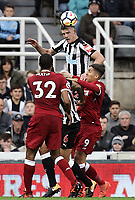 Newcastle United's Ciaran Clark wins an aerial ball despite the attentions of Liverpool's Roberto Firmino<br /> <br /> Photographer Rich Linley/CameraSport<br /> <br /> The Premier League -  Newcastle United v Liverpool - Sunday 1st October 2017 - St James' Park - Newcastle<br /> <br /> World Copyright &copy; 2017 CameraSport. All rights reserved. 43 Linden Ave. Countesthorpe. Leicester. England. LE8 5PG - Tel: +44 (0) 116 277 4147 - admin@camerasport.com - www.camerasport.com