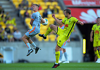Phoenix's Matti Steinmann fouls Brisbane's Stefan Mauk during the A-League football match between Wellington Phoenix and Brisbane Roar at Westpac Stadium in Wellington, New Zealand on Saturday, 23 November 2019. Photo: Dave Lintott / lintottphoto.co.nz