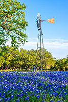 Texas Windmill and Bluebonnets Vertical - Another capture of a windmill with bluebonnets in a vertical format. Bluebonnets and windmills are one of our favorite thing to capture in the texas hill country.  There are a lot of wind mills in the hill country but many are in the power lines are near a house or whatever would not make a good image but this one stands alone in a field of bluebonnets with just trees and blue sky with a few clouds.