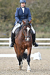 Stapleford Abbotts. United Kingdom. 09 November 2019. Class 6. Unaffiliated Dressage. Brook Farm training centre. Stapleford Abbotts. Essex. United Kingdom. Credit Garry Bowden/Sport in Pictures.~ 09/11/2019.  MANDATORY Credit Garry Bowden/SIP photo agency - NO UNAUTHORISED USE - 07837 394578