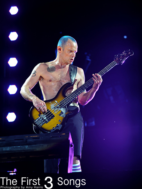 Michael Balzary, better known as Flea, of the Red Hot Chili Peppers performs during the Hangout Music Fest in Gulf Shores, Alabama on May 19, 2012.