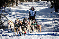 Becca Moore teams runs on the trail after leaving the start during the Restart of the 2016 Iditarod in Willow, Alaska.  March 06, 2016.