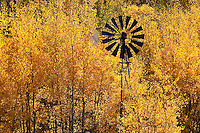 Windmill amidst Fall Aspens