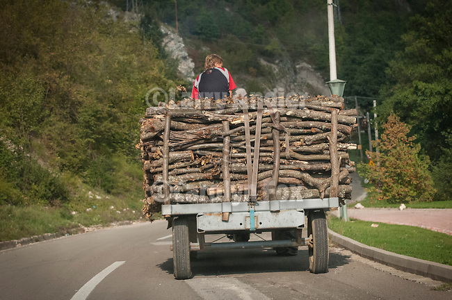 travels with Miloje--on the road near Novi Pazar--Riding on top of a load of wood on a tractor-pulled trailer on the roadway, Serbia
