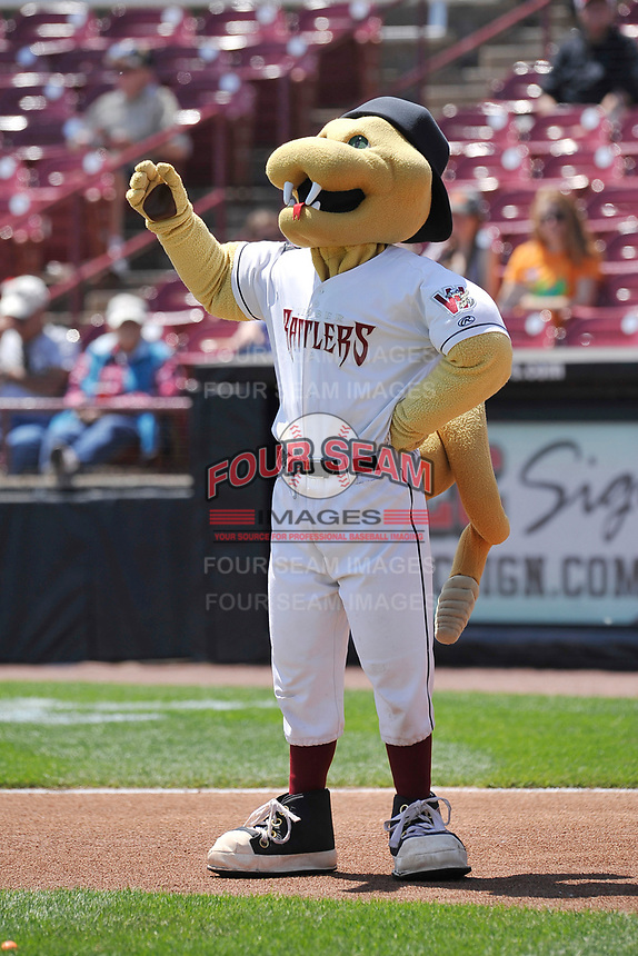Wisconsin Timber Rattlers mascot Fang prior to the game against the Quad Cities River Bandits at Fox Cities Stadium on June 27, 2017 in Appleton, Wisconsin.  Wisconsin lost 6-5.  (Dennis Hubbard/Four Seam Images)