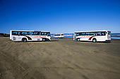 Tourist buses on Ninety Beach at Waipapakauri beach, Far North. Northland, New Zealand.