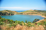 Bay on Whaiheke Island in Hauraki Gulf near Auckland New Zealand summer landscape