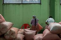 """Supporters of former Bolivian President Evo Morales, known as coca growers """"cocaleros"""", work selecting and packing coca leaves in the local coca market, in Entre Rios, Chapare province, Bolivia. November 27, 2019.<br /> Les partisans de l'ancien président bolivien Evo Morales, connus sous le nom de cultivateurs de coca """"cocaleros"""", sélectionnent et emballent des feuilles de coca sur le marché local de la coca, à Entre Rios, province du Chapare, Bolivie. 27 novembre 2019."""