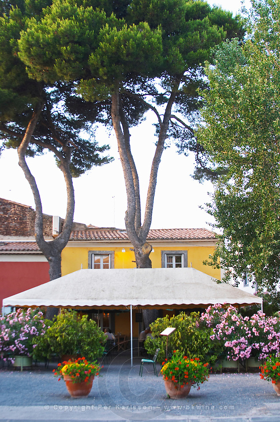 Restaurant Chez Philippe. The terrasse. Marseillan. Languedoc. France. Europe.