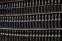 Rows of beer bottles a the bottling station of a micro brewery.