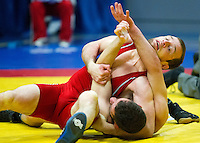 British Senior Wrestling Championships 2014