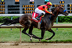 May 3, 2019 : McKinzie, #1, ridden by jockey Mike Smith, wins the Alysheba on Kentucky Oaks Day at Churchill Downs on May 3, 2019 in Louisville, Kentucky. Mary Meek/Eclipse Sportswire/CSM
