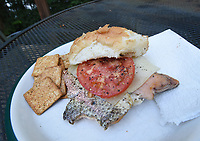 NWA Democrat-Gazette/FLIP PUTTHOFF <br /> Smoked trout makes a great fish sandwich, so good       July 23 2019      someone took a bite of fish before shooting the picture.