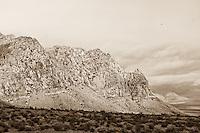 Nevada Rocks