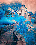 City Hall, Monterey, California (Infrared) ©2017 James D Peterson.<br />