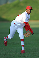 Tyrell Jenkins makes his Pro debut during a game against the Princeton Rays  at Howard Johnson Field, Johnson City, TN August 26, 2010. Johnson City won the game 6-1