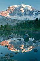 Mt. Rainier<br />   from Moraine Park<br /> Mount Rainier National Park<br /> Cascade Range,  Washington