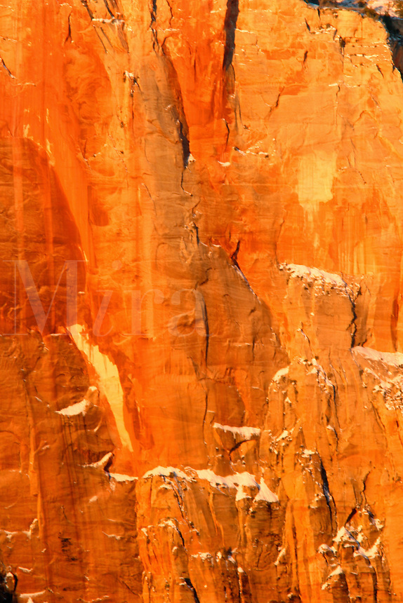 Orange Canyon wall, Zion National Park, Washington County, U