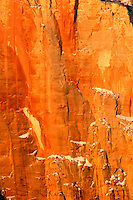Orange Canyon wall, Zion National Park, Washington County, U