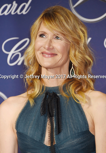 PALM SPRINGS, CA - JANUARY 02: Actress Laura Dern attends the 28th Annual Palm Springs International Film Festival Film Awards Gala at the Palm Springs Convention Center on January 2, 2017 in Palm Springs, California.