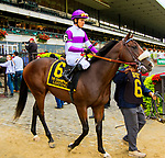 """OCTOBER 6, 2018 : Listing in post parade of the """"Win & You're In"""" Champagne Stakes on Champagne Stakes Day at Belmont Park on October 6, 2018 in Elmont, NY.  Sue Kawczynski/ESW/CSM"""