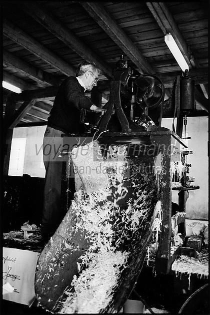 Europe/France/Alsace/67/Bas-Rhin/ Krautergersheim: Une choucrouterie chez Monsieur Pfleger, producteur de choucroute