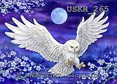 Kayomi, REALISTIC ANIMALS, REALISTISCHE TIERE, ANIMALES REALISTICOS, paintings+++++,USKH265,#a#,owl