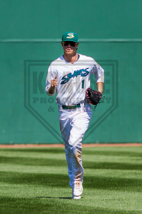 Beloit Snappers outfielder Skye Bolt (1) during a Midwest League game against the Burlington Bees on April 17th, 2016 at Pohlman Field in Beloit, Wisconsin.  Beloit defeated Burlington 6-0. (Brad Krause/Krause Sports Photography)