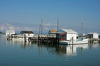 As we approach the main dock on Tangier Island, the dock side crab-huts seem to be floating on the water.