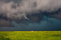 Red car driving under a severe thunderstorm over a green wheat field near La Crosse, KS,  May 25, 2008