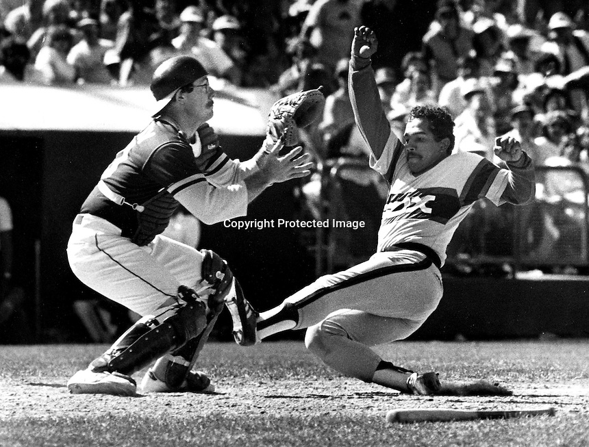 Oakland Athletics catcher Bob Kearney grabs throw and tags out Chicago White Sox runner Tony Bernazard.  (1983 photo by Ron Riesterer)
