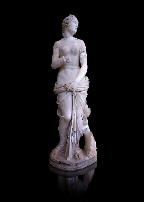 The Roman Venus Statue, the Goddess of Love, follows the style of a modest Aphrodite, known by other Roman replicas are copies of Ttththird century BC Hellenistic Greek statues now lost. Dated circa 1st quarter of second century AD, the Venus statue was excavated from the Odeon of Carthage. The National Bardo Museum, Tunis.  Against a black background.