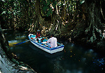 Scenes of boat tour on Dominica's Indian River near Portsmouth