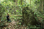 A member of the Dai ethinic community prays at the site of a large stone in a forest considered to be a holy site. The site is considered to be holy as approximatley 370 years ago a highly respected doctor was reputed to have died against this, the only large stone in the forest. It has since become a place of prayer for the local buddhist population. Local people are replanting an area of forest on this hill at Mangyangguan, Xishuangbanna, China. This project is supported by the BGCI and has been studied by XTBG for over 30 years.