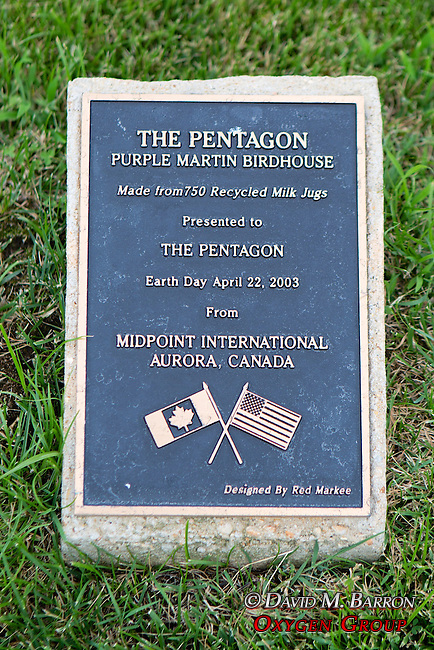 Pentagon Purple Martin Bird House Plaque