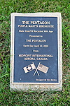 Pentagon Purple Martin Bird House Plaque