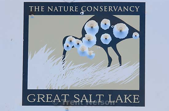 the nature conservancy great salt lake sign bird shot up. Davis County project. 04/06/2005<br />