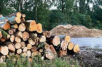 Nederland - Amsterdam - 2019.Amsterdam Noord. Bomen moeten wijken voor nieuwbouw. Hout wordt versnipperd. Biomassa wordt gebruikt voor de energieopwekking of direct als biobrandstof. Foto Berlinda van Dam / Hollandse Hoogte.