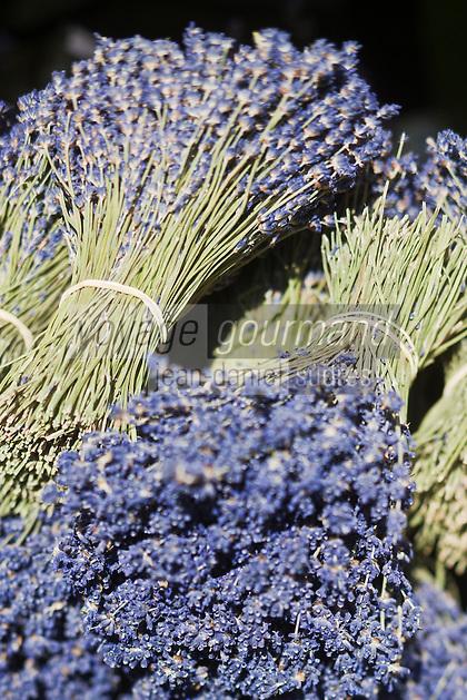 Europe/France/Provence-Alpes-Côte d'Azur/84/Vaucluse/Lubéron/Apt: Sur le marché: Bouquets de Lavande