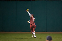 Stanford Softball vs Montana, March 2, 2019