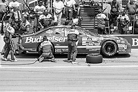 #11 Ford Thunderbird driven by Bill Elliott makes a pit stop during the DieHard 500, NASCAR Winston Cup race, Talladega Superspeedway, July 26, 1992.  (Photo by Brian Cleary/bcpix.com)