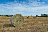 Haybales up close on the farm in the Texas Hill country with a nice cloudy day.